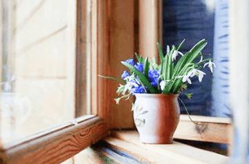 Скидки, акции на деревянные окна okna-fresh.ru